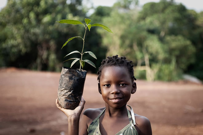 Green Earth Appeal - Tree Planting and Festivals